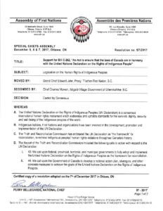 pdf of AFN Resolution 97-2017